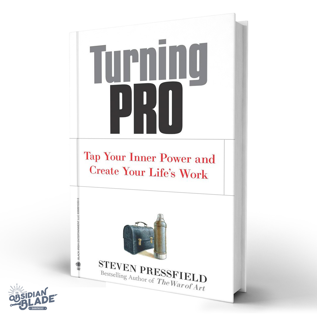 Best Business Books for Entrepreneurs: Turning pro by Steven Pressfield